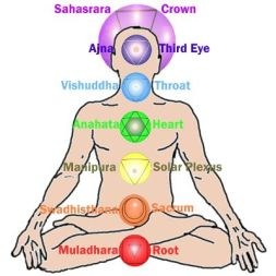The 7 energy centers (chakras) of the body