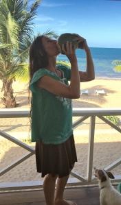 5 coconut beach bliss