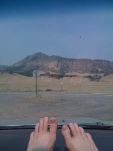 Drive to Shasta 2 copy