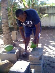 Junior chops coconut