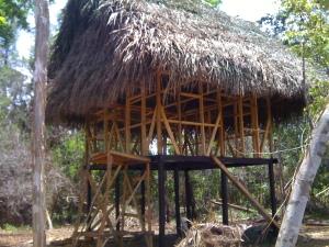 Parama's house