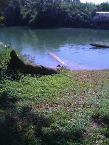 canoe-floating
